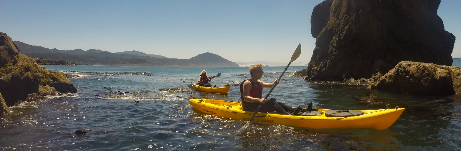 Read more about the article Port Orford Ocean Wildlife Kayaking